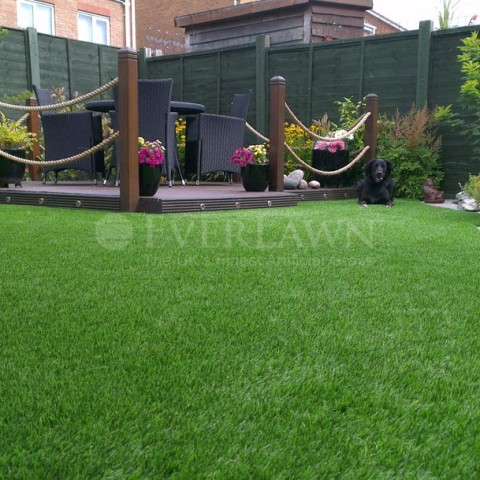 EverLawn-Perfect-for-Pets.jpg